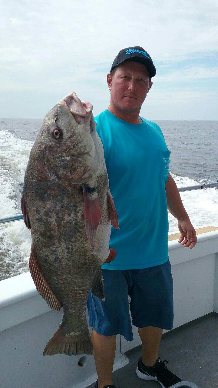 Nice Drumfish caught aboard the Miss Chris, Cape May, NJ