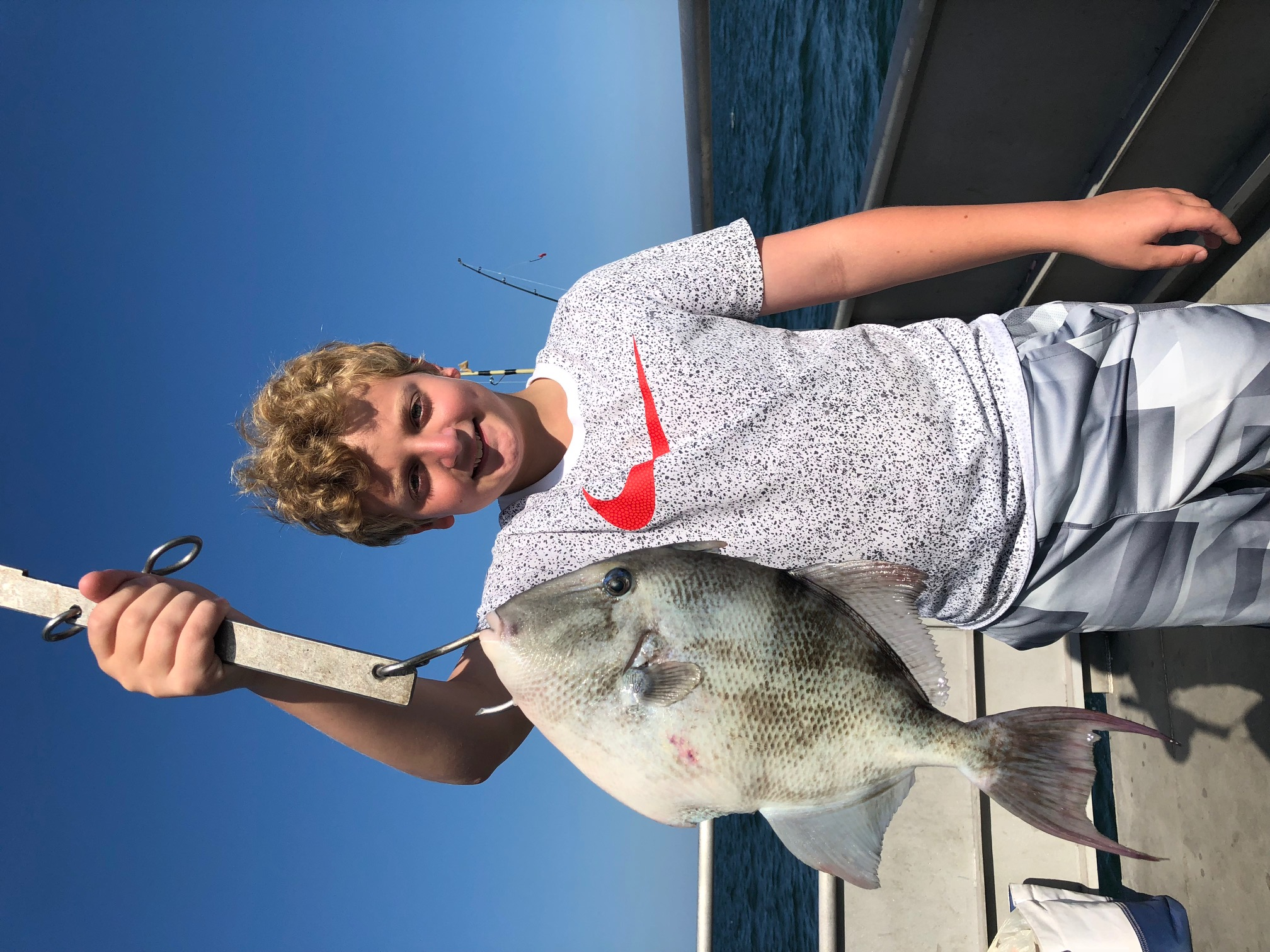 Tasty Triggerfish caught off of Wildwood Crest, New Jersey